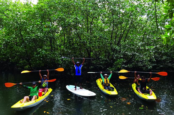 Stand Up Paddle and Ocean Kayak AdvenTours Coron""