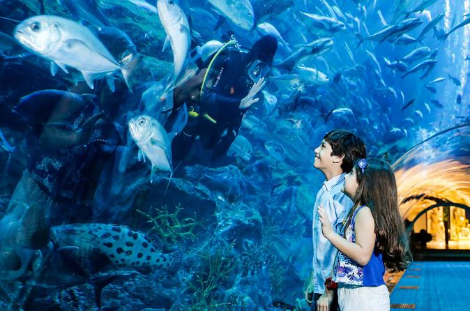 Dubai Aquarium and Underwater Zoo - Explorer Package