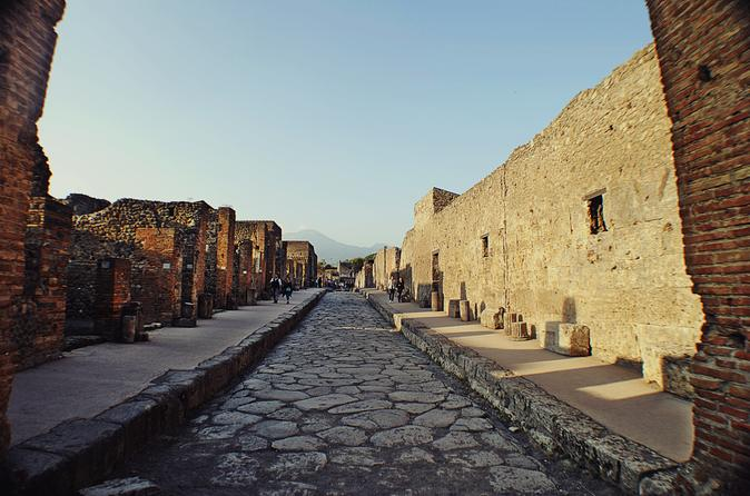 Pompeii Herculaneum and Winery Tour