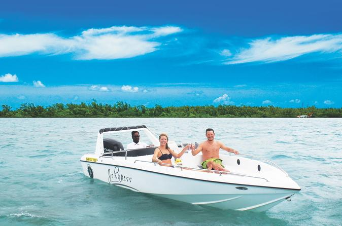 Ile aux cerfs speedboat excursion from trou d eau douce in trou d eau douce 260175