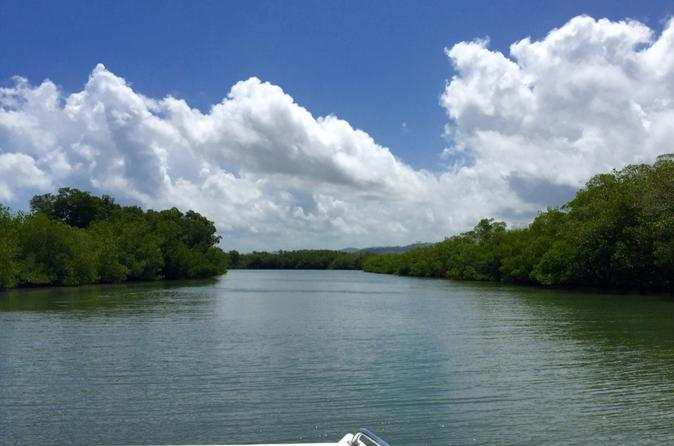 Mangrove Kayak Tour and Cayo Levantado Beach Experience from Punta Cana