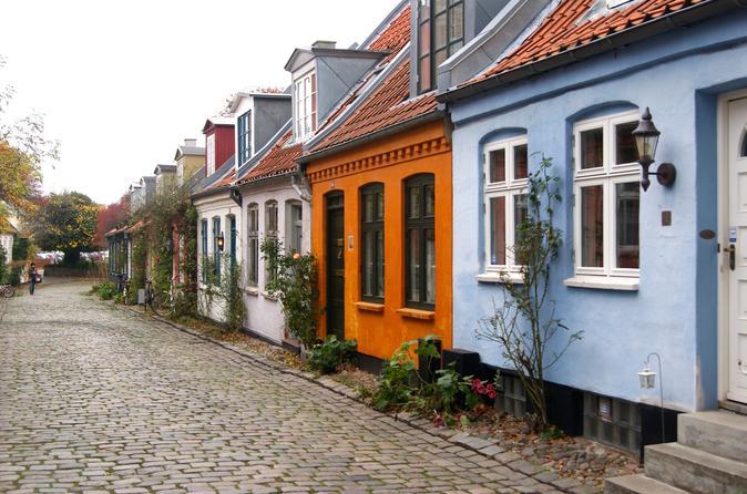 Aarhus panorama private walking tour in aarhus 289316