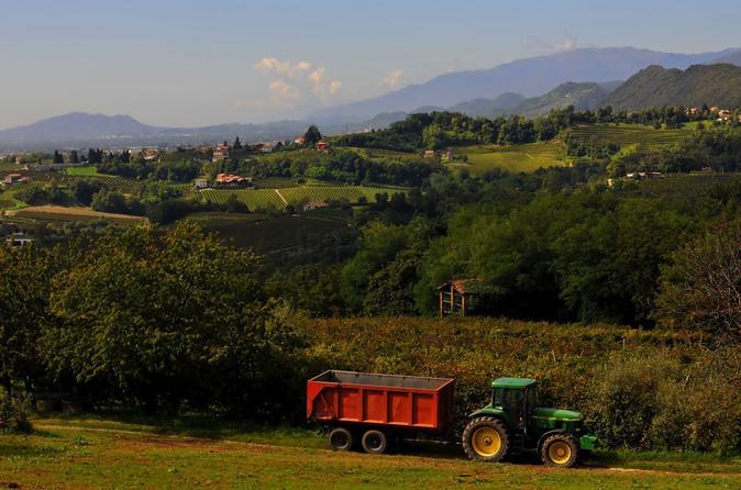 Treviso kleine gruppe prosecco wein route tour von venedig for Kleine esstisch gruppe