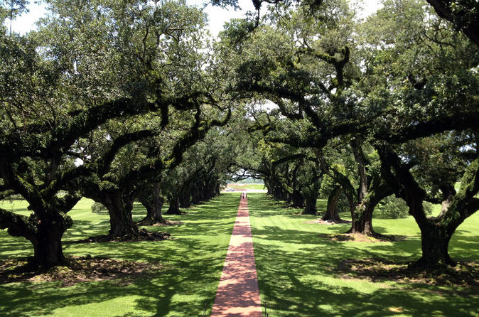 Small group tour of oak alley and laura plantation from new orleans in new orleans 158559