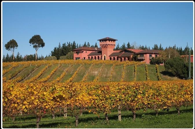 Private Tour: Marlborough Winter Wine and Scenic Tour from Picton New Zealand, Pacific Ocean and Australia