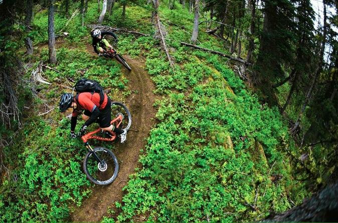 High performance mountain bike rental in squamish in squamish 310778