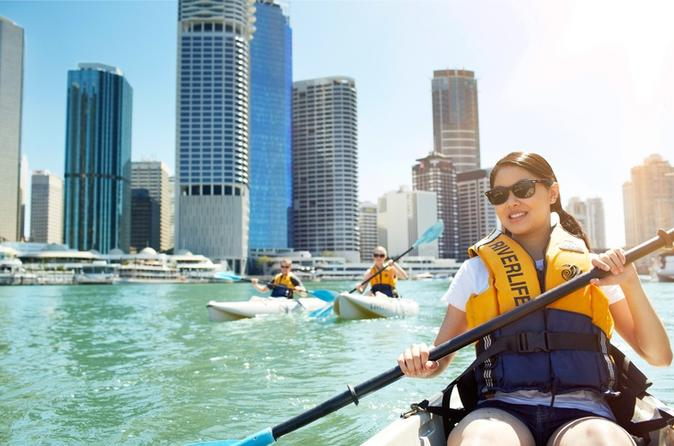 Brisbane kayak tour in brisbane 258206