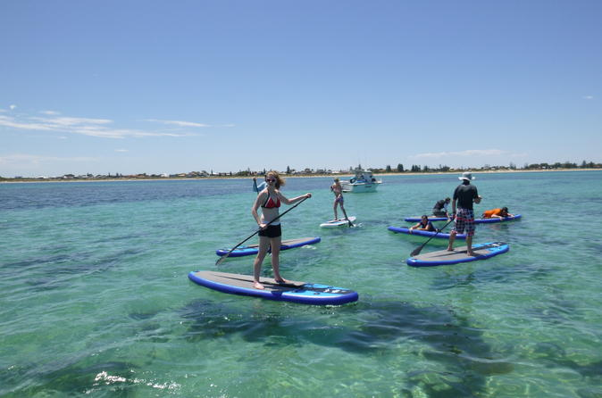 Shoalwater Stand-Up Paddleboarding Lesson and Tour