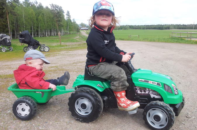Be a Farmer for a Day in Central Sweden
