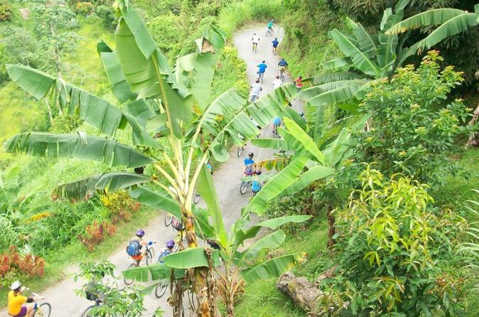 Konoko Falls and Garden Bike Safari from Ocho Rios