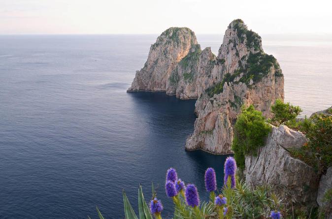 Capri all Inclusive Private Tour from Positano