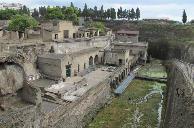 Skip-the-Line Herculaneum Ruins Ticket - Naples