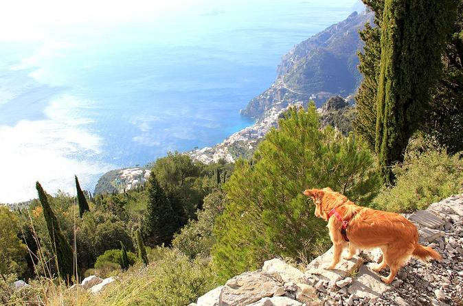 The Path of the Gods with private transfer from Sorrento