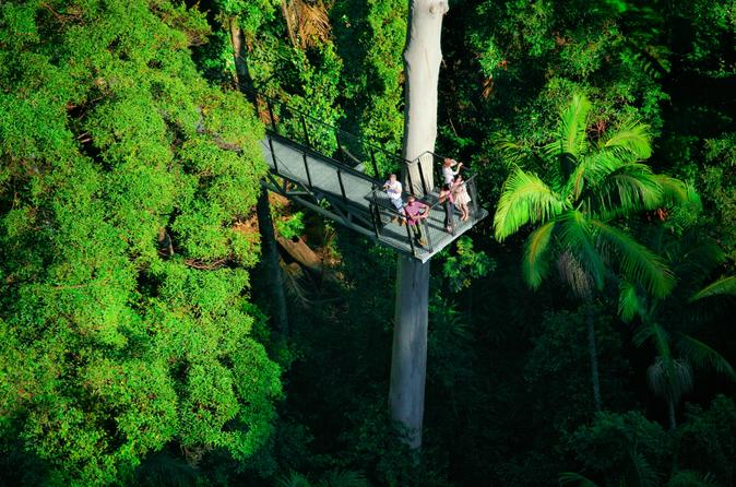 Mount Tamborine Day Trip from the Gold Coast Including Skywalk