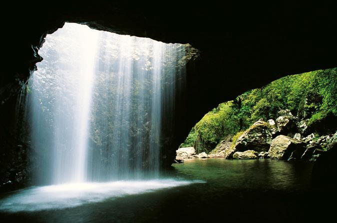World heritage springbrook national park tour including natural bridge in gold coast 190258