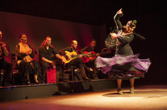Flamenco Show: Palacio del Flamenco in Barcelona