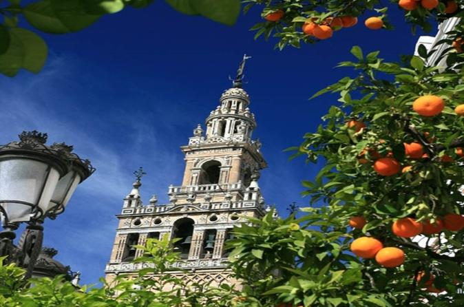 Santa Cruz Quarter and Cathedral Guided Day Tour in Seville