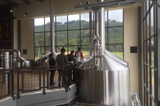 Bogot beer company s brewery tour in bogot 396514