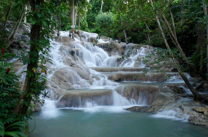 Ocho Rios Shore Excursion: Private Dunn's River Falls Tour