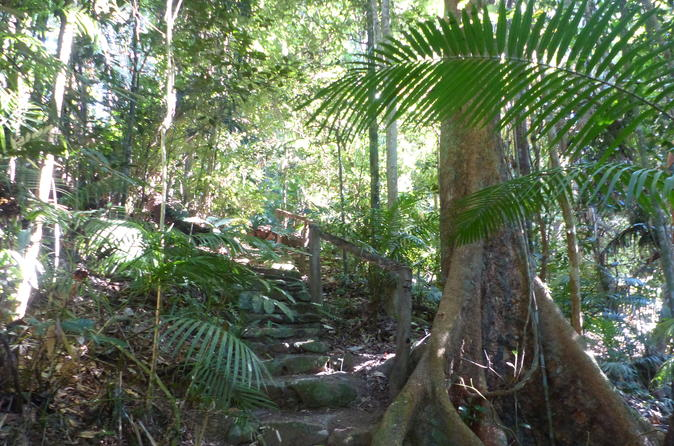 Cairns Walking & Biking Tours