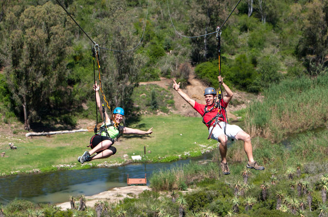 Port Elizabeth Shore Excursion: Addo Zipline Tour and Giant Swing Experience