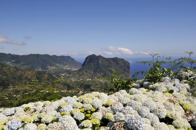 Dia inteiro no Leste de Madeira - Camacha, Pico do Ariero, Ribeiro Frio, Portela, Santana