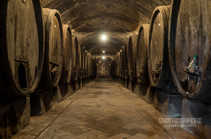 Wine tasting tour in a historical wine cellar in certaldo 263329