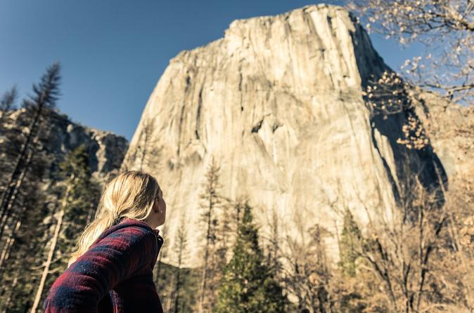 San Francisco To Yosemite National Park Day Trip With Entry 2019