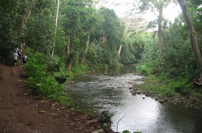 Wailua river and secret falls guided kayak and hiking tour in kapaa 265418