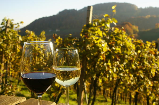 Private Tour: Austrian Wine Tasting in a Traditional Augustinerkeller
