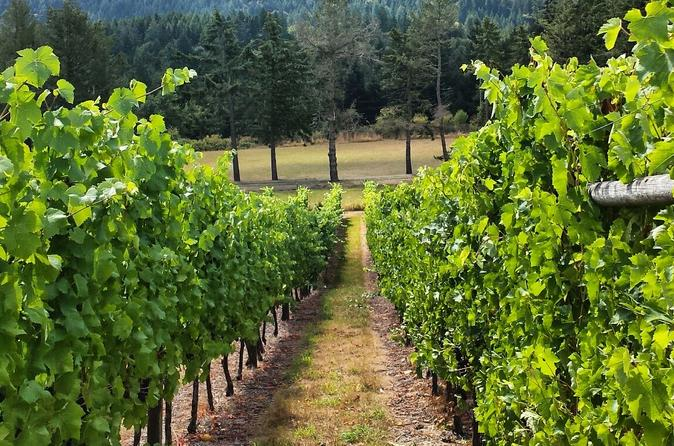 Cowichan Valley Wine Tour in Vancouver Island