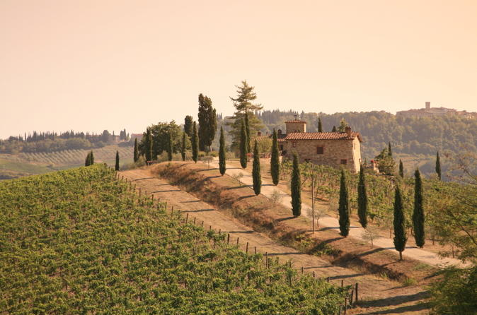 Chianti Half-Day Trip with Traditional Tuscan Dinner and Wine Pairing from Florence