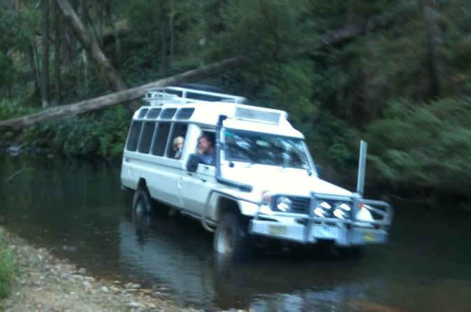 Wombat State Forest Wildlife Safari 4WD Tour from Woodend or Melbourne