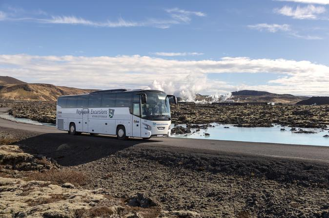 Blue Lagoon Coach Transfer from Reykjavik