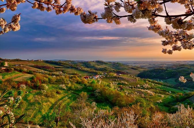 Collio: Cividale Del Friuli And Wine Tastings - Trieste