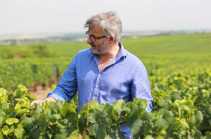 Champagne Private Day Trip from Paris with a Wine Expert