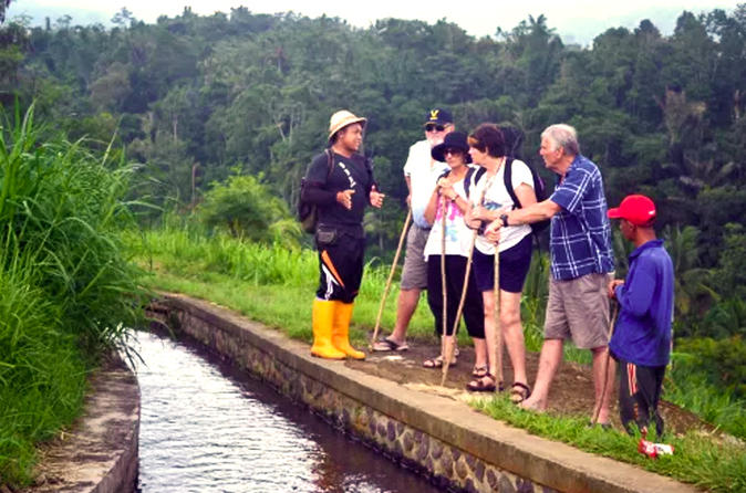 Private Jatiluwih Paddy Fields and Rainforest Trekking with Local Farmers in Bali