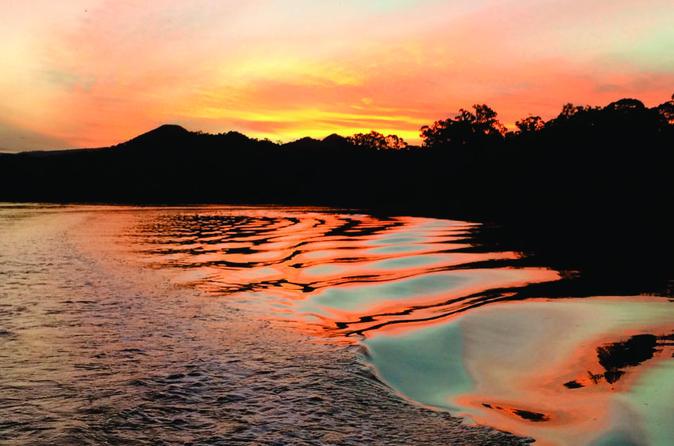 Brunswick heads sunset eco rainforest river cruise in brunswick heads 267110
