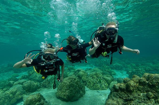 1 day discover diving in ko lanta in ko lanta yai 267201