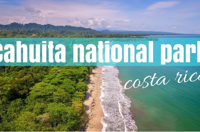 Day Trip from San Jose to Cahuita National Park (Caribbean Coast)