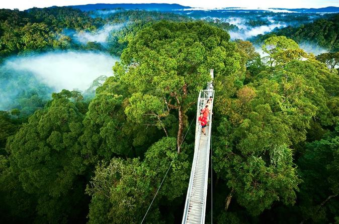 Day trip from San Jose to Monteverde Cloud Forest & Sky Adventure Park