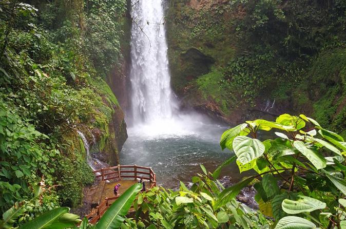 La Paz Waterfall Gardens & Wildlife Refuge day tour from San Jose