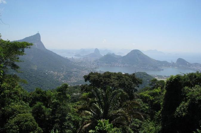 Image result for tijuca rio