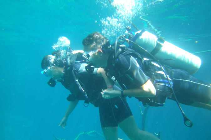 Learn to scuba dive in las terrenas in las terrenas 298725