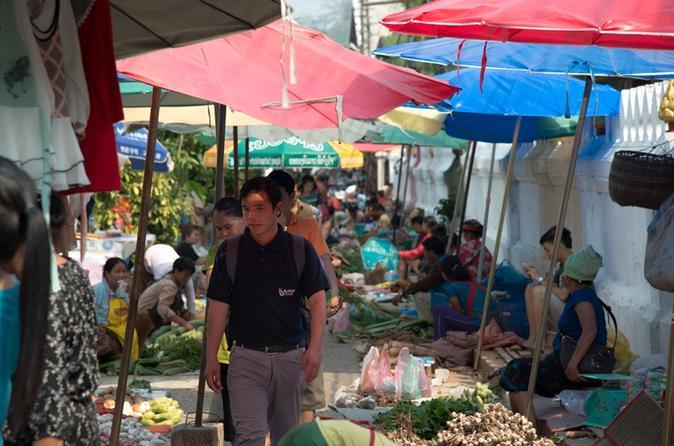 Luang Prabang Local Life Full-Day Small Group Tour