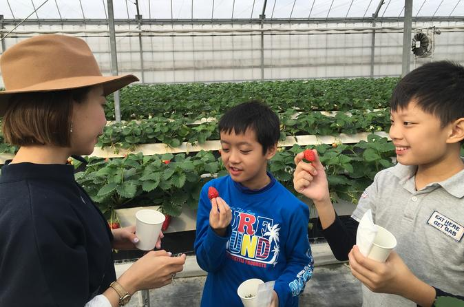 Fruit picking and bbq at a farm in aichi in nagoya 404353