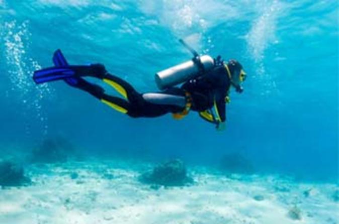 PADI Scuba Diver Course in Puerto Plata