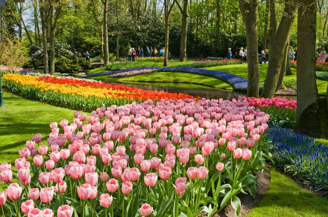 Evite as Filas: excursão para os Jardins Keukenhof e visita à Fazenda das Tulipas saindo de Amsterdã