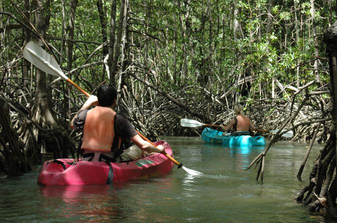 Damas island mangrove kayaking tour in quepos 271879