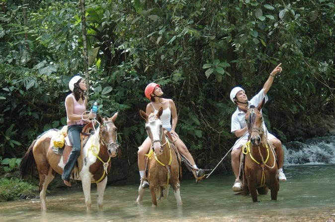 Horseback riding tour from manuel antonio in quepos 444308